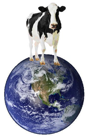 Cow standing on top of an image of the earth